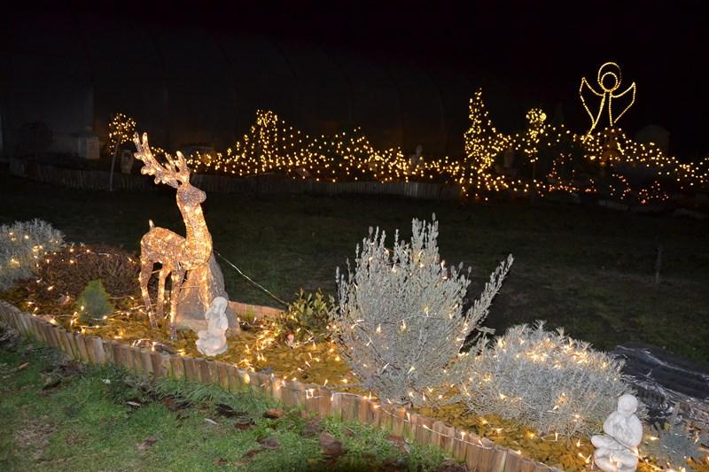 Karácsonyi koncert és díszvilágítás egy balástyai családnál