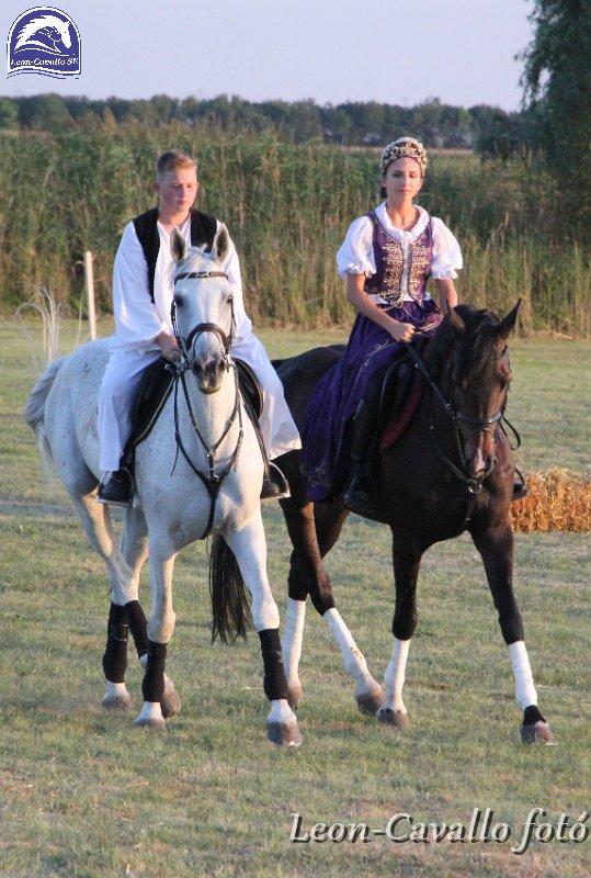 A Leon-Cavallo lovas táncszínház megyei sikerei