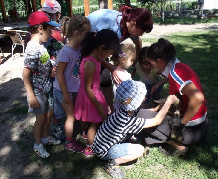 Balástyai óvodások zsivaja töltötte meg az Állatsimogatót